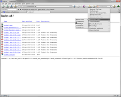 Captura de pantalla nº 5 del complemento
