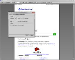 Screenshot n. 20 del componente aggiuntivo