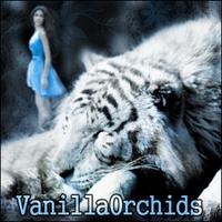 VanillaOrchids